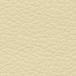 Eco Leather Beige SX00
