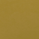 P139 Matte Mustard