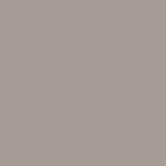 Polypropylene Taupe PANTONE 402C
