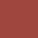 Polypropylene Marsala PANTONE 18-1438