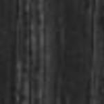 P15L Ash Lacquered Matte Black