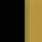 P69W/BOS Black Laminate Brushed Brass Edge