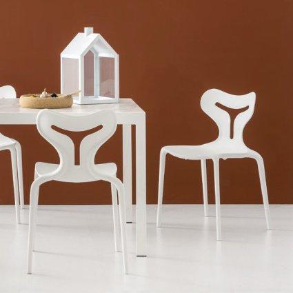 Connubia restaurant Area 51 Chair CB/1042 Sedie CS-1042-RIST  0